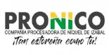PRONICO, S.A.