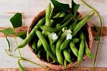 Las mejores proteínas vegetales