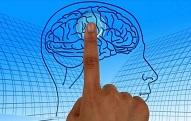 ¿Quiere mantener el cerebro joven? pruebe con una ensalada al día