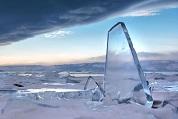 Cocodrilos congelados en hielo. La glaciación se apodera de EEUU. Videos impactantes