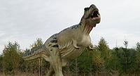 Misterio resuelto: cómo usaban los 'Tyrannosaurus rex' sus extremidades superiores