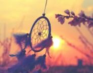 Pensamiento de la Semana Transdoc - Inspiración
