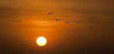 ¿Por que el Sol está tan 'furioso'?