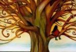 Pensamiento de la Semana Transdoc - Sabiduría