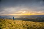 Cómo apreciar la naturaleza puede ayudarte a tomar mejores decisiones